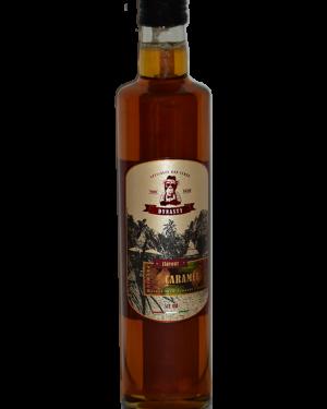 Dynasty Premium Syrup - Caramel